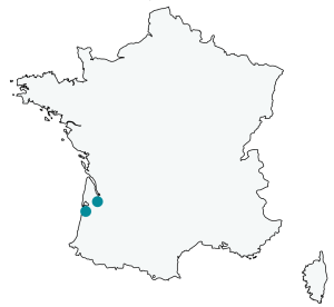 france04